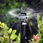 Mini Sprinklers for covering larger garden bed areas
